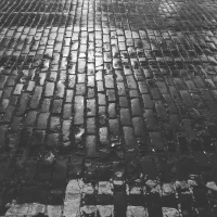 Shiny Setts